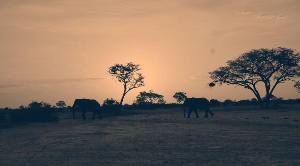 hideawaysafrica-website-cover