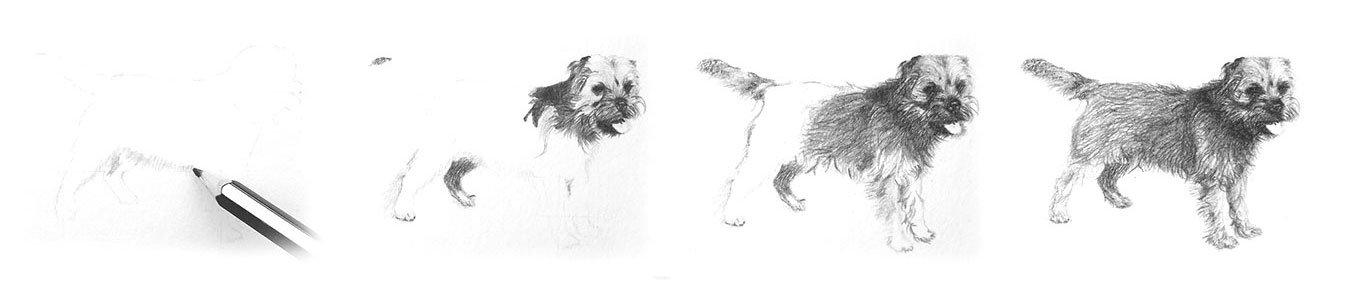 Lodestone Illustrations process - Dog 2