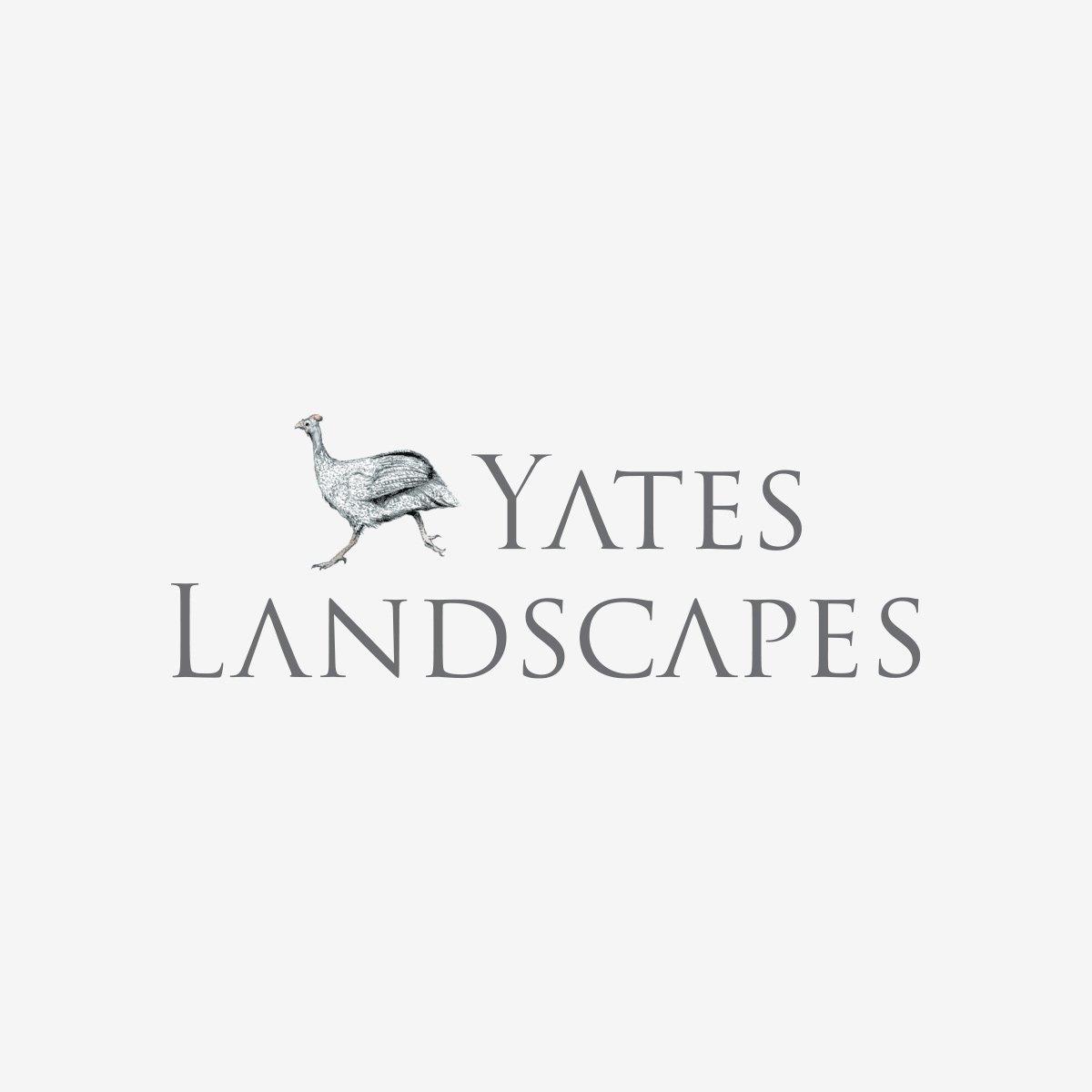 Yates Landscapes Logo